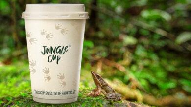 BrandBase launches Jungle Cup