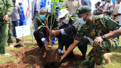 Equity Plants 7,000 Trees at various UoN Campuses